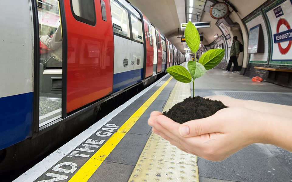 London's Underground and a hand holding a small plant
